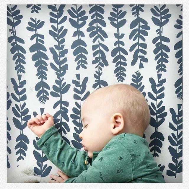 Sabanas para bebés y chicos con estampas exclusivas confeccionas en jersey 100% algodón